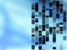 Molekulare Diagnostik: Der genetische Fingerabdruck als Grundlage neuer Medikamente.